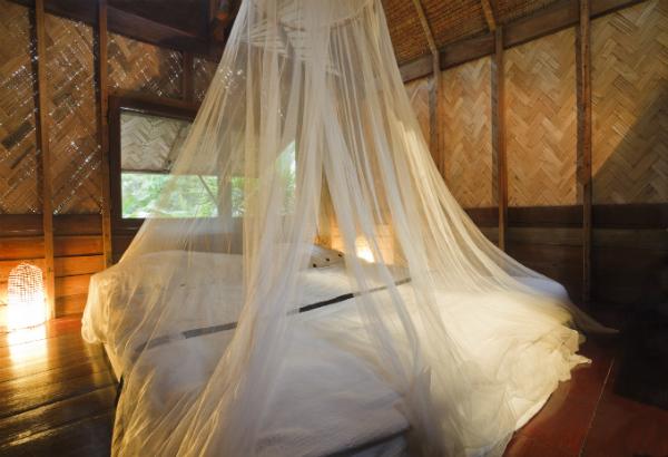 paludisme : les préconisations