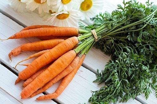 aliments avec des fibres
