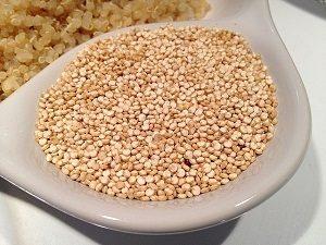 présentation du quinoa