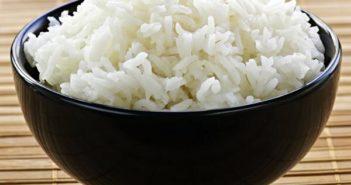 informations sur la diète riz
