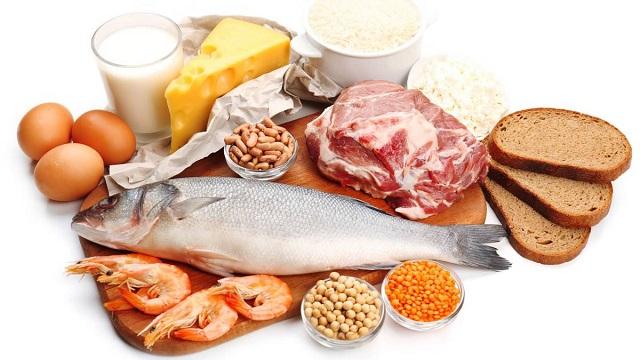 les principes du regime proteine