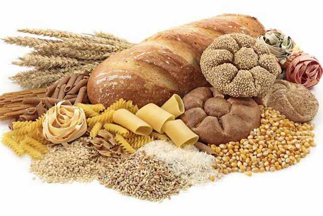 les aliments et les glucides